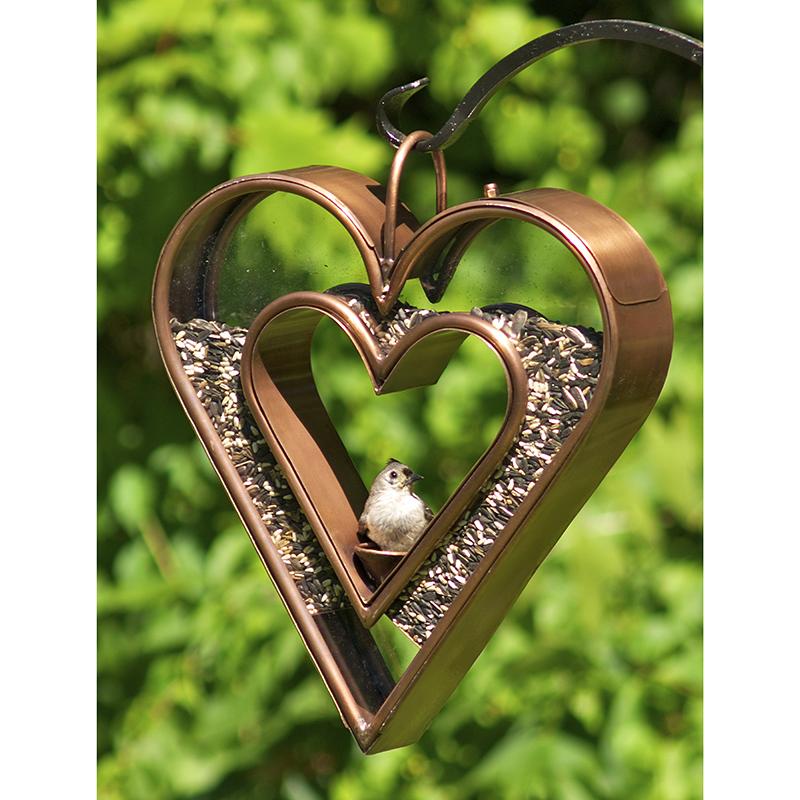 113VB_Heart Fly Thru_Bronze_Glam 1