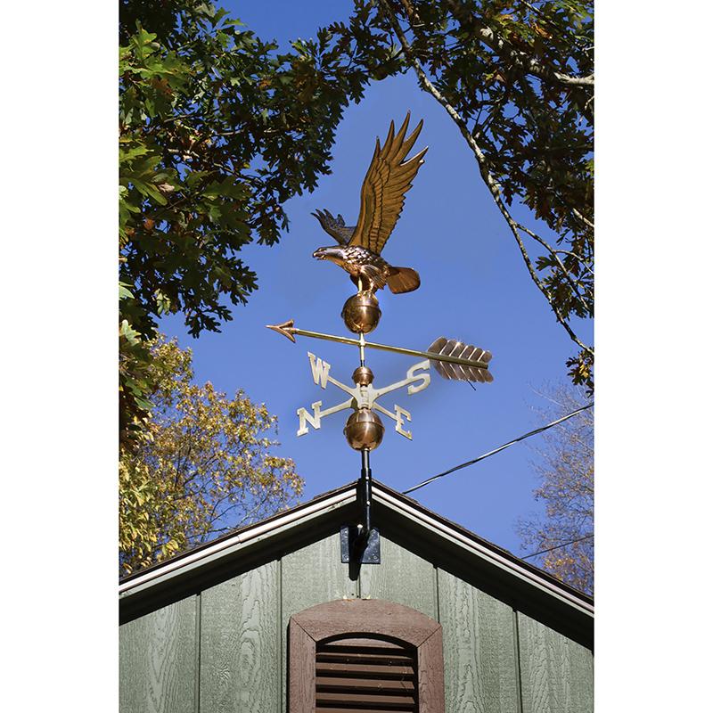 1970P_Freedom Eagle_Polished_Glam 1