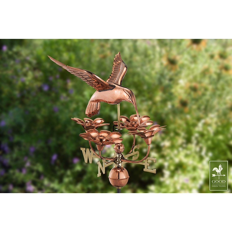 913P_Hummingbird with Flowers_Polished_Theme 3