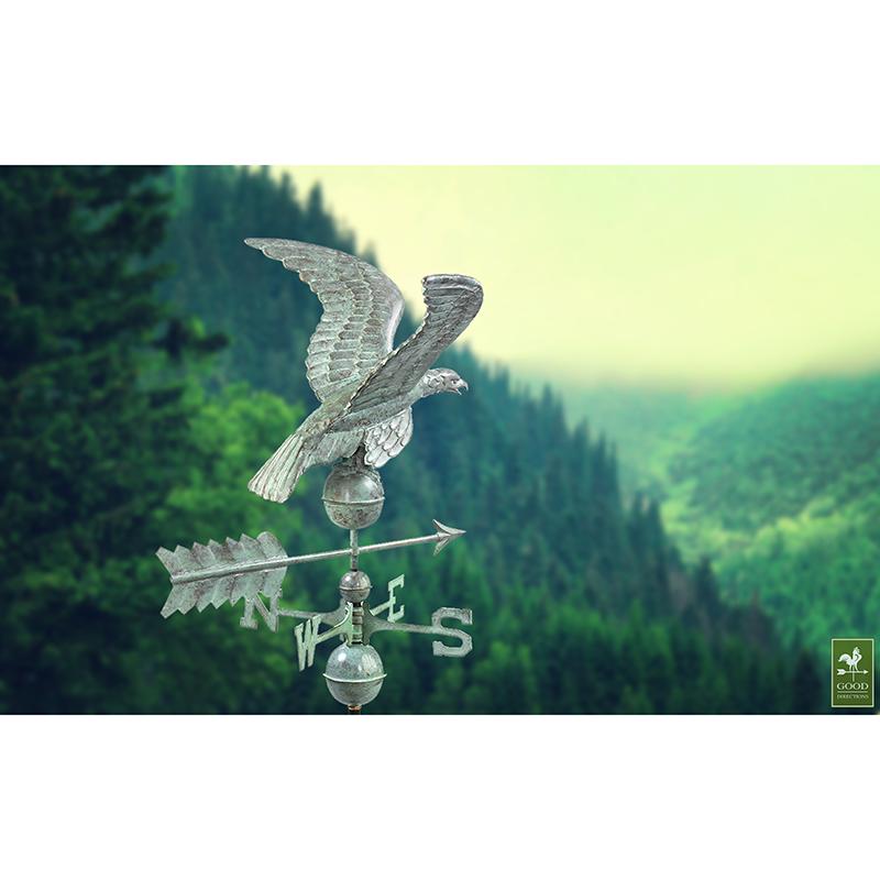 955V1_Smithsonian Eagle_Blue Verde_Theme 4