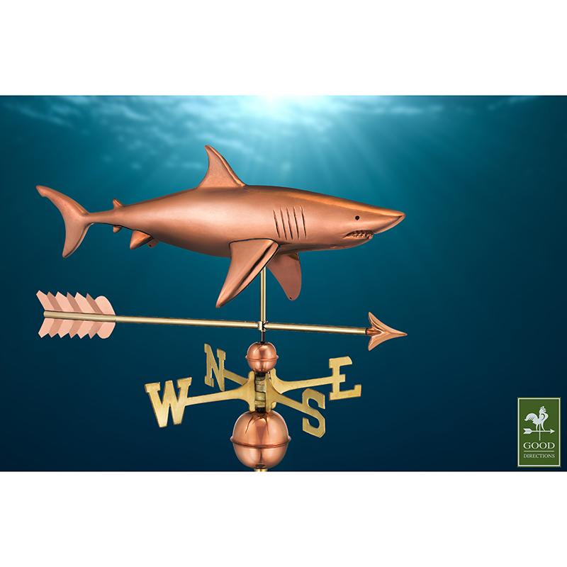 965PA_Shark with Arrow_Polished_Theme 4