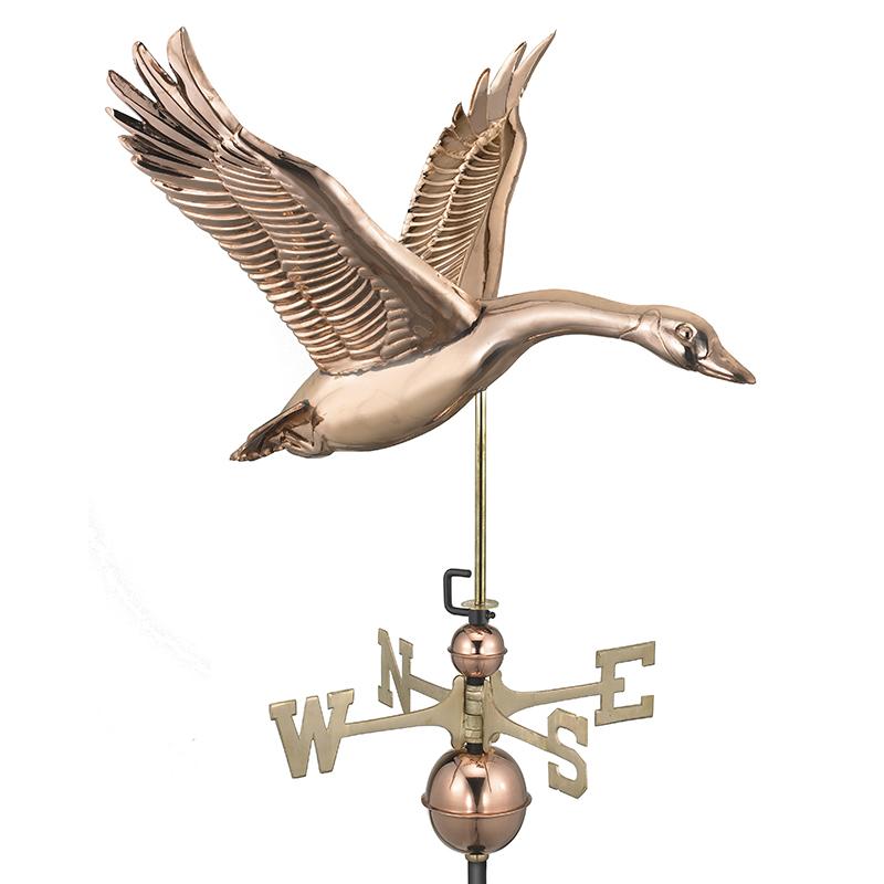 9663P Feathered_Goose_Polished_Silo 1