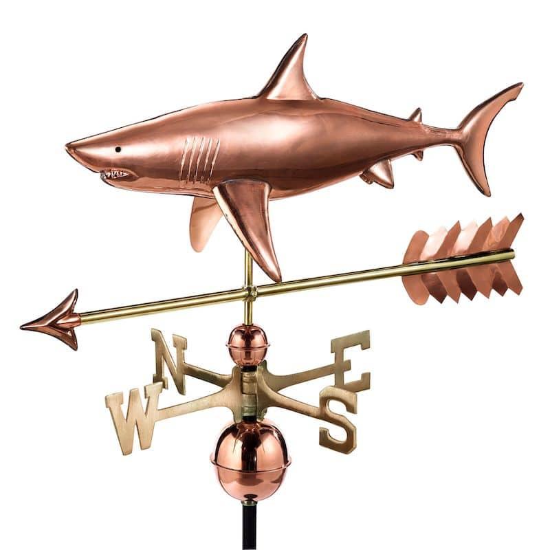 Shark with arrow